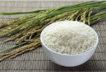 arroz4.png
